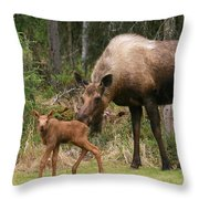 Exploring With Mom Throw Pillow