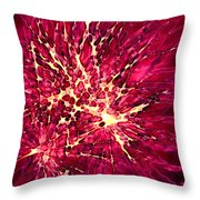 Explosion Throw Pillow by Stephanie Hollingsworth