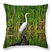 Exquisite Egret Throw Pillow