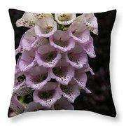 Exquisite Foxgloves Up Close Throw Pillow