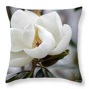 Exquisite Magnolia Throw Pillow