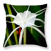 Exquisite Spider Lily Throw Pillow