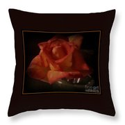 Exquisitely Lovely Throw Pillow