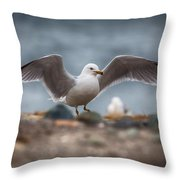 Extended  Throw Pillow