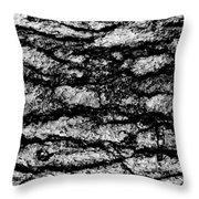 Exterior Skin Bw Throw Pillow