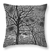 Extreme Contrast Bare Trees During Winter Photograph Throw Pillow