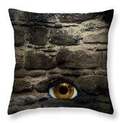 Eye In Brick Wall Throw Pillow