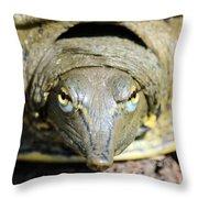 Eye Liner Turtle 8494 Throw Pillow