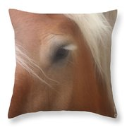 Eye Of A Belgian Horse Throw Pillow