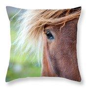 Eye Of A Pony Throw Pillow