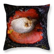 Eye Of Madrone Throw Pillow