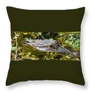 Eye Of The Alligator Throw Pillow