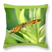 Eye Of The Butterfly Throw Pillow