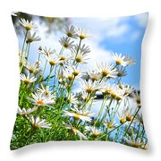 Eye Of The Day Throw Pillow