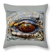 Eye Of The Dragon Throw Pillow