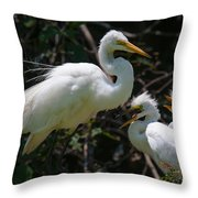 Eye Of The Egret Throw Pillow