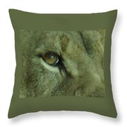 Eye Of The Lion Throw Pillow
