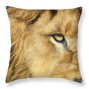 Eye Of The Lion Throw Pillow