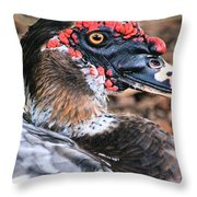 Eye Of The Muscovy Duck Throw Pillow
