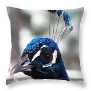 Eye Of The Peacock Throw Pillow