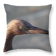 Eye Of The Reddish Throw Pillow