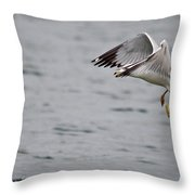 Eye Of The Seagull Throw Pillow