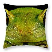 Eye-ringed Bushfrog Throw Pillow