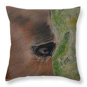 Eye To Eye Throw Pillow