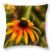 Eye To The Sun Throw Pillow