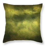 Eye Xix Throw Pillow