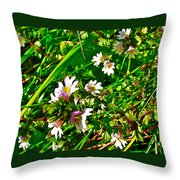 Eyebright On Trout River Trail In Gros Morne Gros Morne National Park-newfoundland  Throw Pillow