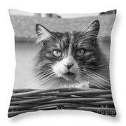 Eyecat Throw Pillow