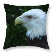 Eyecon Throw Pillow