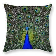 Eyes Have It Throw Pillow