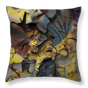 Eyes In The Storm  Throw Pillow