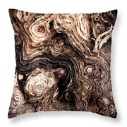Eyes Of A Tree Throw Pillow