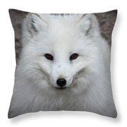 Eyes Of The Arctic Fox Throw Pillow