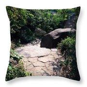 New York's Central Park Throw Pillow