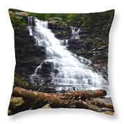 F L Ricketts Throw Pillow