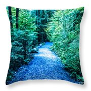 F0010066 Throw Pillow