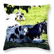 F0040442-9jpg Throw Pillow