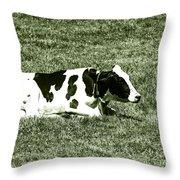 F0040454 Throw Pillow