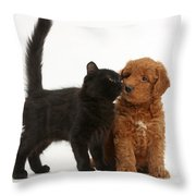F1b Goldendoodle Pup With Kitten Throw Pillow
