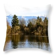 F2110929 Throw Pillow