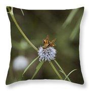 Fa-18ef Super Hornet Moth Throw Pillow