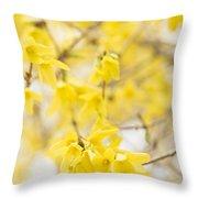 Fabulous Forsythia Throw Pillow