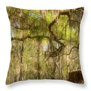 Fabulous Spanish Moss Throw Pillow by Christine Till