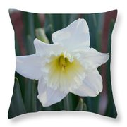 Face Of A Daffodil Throw Pillow