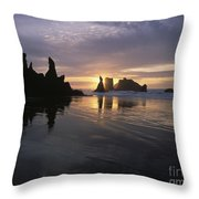 Face Rock Beach Bandon Oregon Throw Pillow