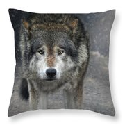 Face To Face With The Wolf Throw Pillow